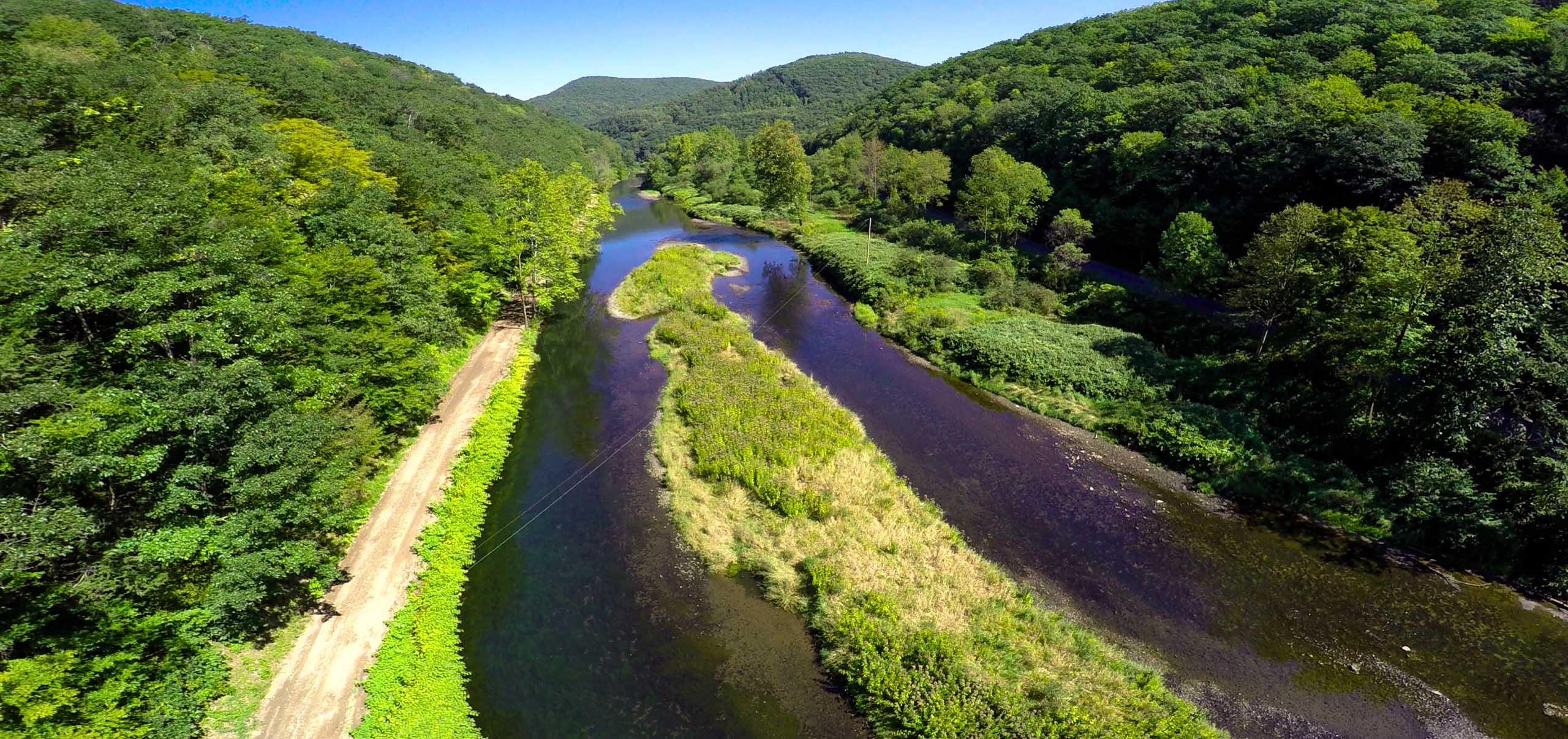 Pine creek for Lake hamilton fishing report